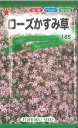 【代引不可】【5袋まで送料80円】 □ローズかすみ草