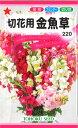 【代引不可】【5袋まで送料80円】 □切花用金魚草