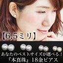 【あす楽対応】6.5mm 本真珠 18金 ホワイトゴールドピ...