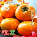 ◆たねなし柿 和歌山産◆【送料無料】【優...