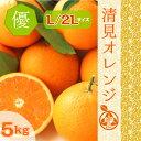 ◆木熟 清見オレンジ【ご家庭用】◆  高糖度 清見タンゴール 清見 【優品】L/2Lサイズ 5kg訳