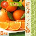◆木熟 清見オレンジ【送料無料】【ご贈答】◆ 高糖度【秀品 L/2Lサイズ 5kg】清見タンゴール