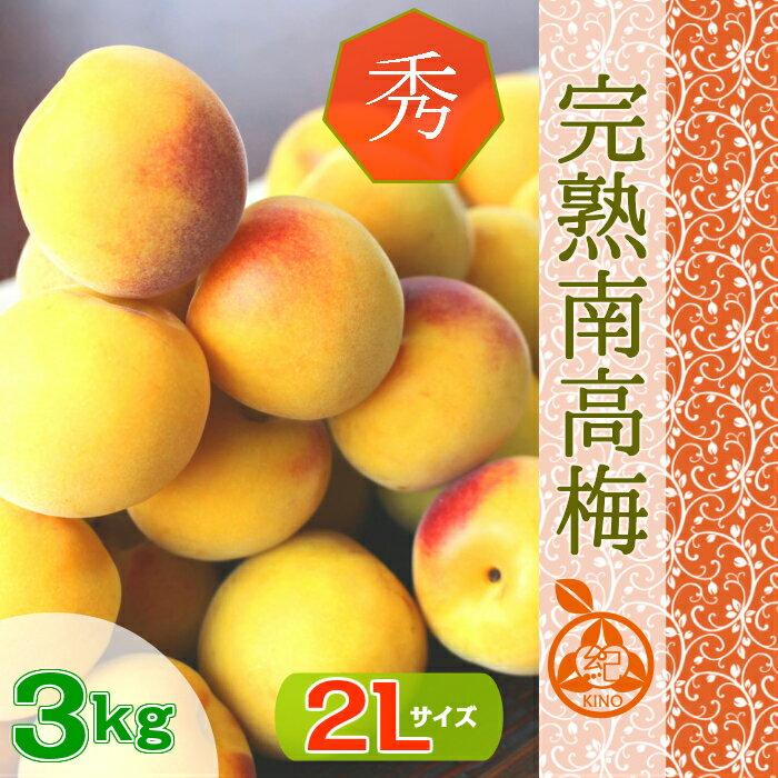◆南高梅 完熟【送料無料】【秀品 2L サイズ ...の商品画像