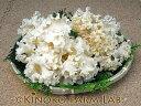 生鮮 ハナビラタケ (500g) コリコリ シコシコ 食感がおいしい きのこ はなびらたけ 栽