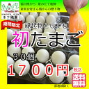 期間限定初たまご30個「縁起物」としても若鶏が初めて産んだホントに小さいサイズでお弁当箱にもはいります。鮮度保証!