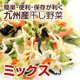 【簡単・便利・保存が利く】熊本のお野菜を中心とした干し野菜(乾燥野菜)です。【九州産】干し野菜(乾燥野菜)ミックス 100g