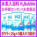 H2bb-01-hin