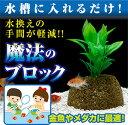【送料無料】魚が喜ぶ エコバイオブロック【10P03Dec16】
