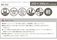 ms200200-300