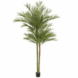 【人工植栽】 タカショー 大型人工樹 アレカパー...の商品画像