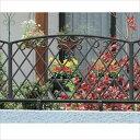 三協アルミ 鋳物フェンス キャスモア1型 本体 1008 フリー支柱タイプ 『アルミフェンス 柵』