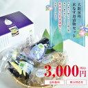 【送料無料|生きた乳酸菌入り】大阪・泉州特産水なす(ぬか漬×2・カット液漬×2・姿液