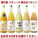 梅乃宿 リキュール 1800ml 6本 選べる 飲み比べセットあらごし梅酒 ゆず酒 あらごしもも あ...