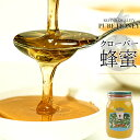 クローバー蜂蜜 600g 化粧箱入り 北海道産【クローバーはちみつ、シロツメグサハチミツ 白詰花草】