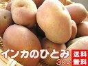 インカのひとみ!3kg(サイズ無選別)【送料無料】北海道産地直送じゃがいも【インカのめざめの新しい品種】美味しいジャガイモ※只今、発送中!