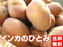 インカのひとみ!5kg(サイズ無選別)【送料無料】北海道産地直送じゃがいも【インカのめざめの新しい品種】美味しいジャガイモ※只今、発送中!