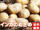 インカのめざめ!3kg(サイズ無選別)【送料無料】北海道産地直送 いんかの目覚め 栗の様な甘いじゃがいも 美味しいジャガイモ※11月上旬頃から発送予定