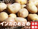 インカのめざめ!お得用!5kg(サイズ無選別)【送料無料】北海道産地直送 いんかの目覚め 栗の様な甘いじゃがいも 美味しいジャガイモ※11月上旬頃から発送予定