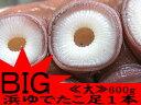 浜ゆでたこ足1本≪大≫約600g オオダコ【北海道産刺身タコ-水だこ】真蛸に比べて、肉質が柔らかく、ミズダコの方が歯触りが良い。