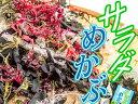 サラダめかぶ 90g【乾燥海草サラダ】わかめ・メカブ等 ミネラルたっぷりな5種類の海藻に食物繊維豊富な寒天をプラスしました 芽かぶサラダ