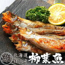 本ししゃもオス30尾【北海道産本柳葉魚】脂がのり身の引締った...