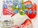ぬって食べるヨーグルト200g ギリシャ風 2個セット【塗るヨーグルト】濃厚なようぐると 北海道小林牧場物語【パンやフルーツにぬるヨウグルト】カロリー控えめ