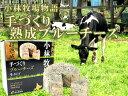 超熟成手づくりブルーチーズ生タイプ200g【ナチュラルちーず】青かびチーズ≪北海道小