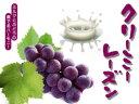 クリーミーレーズン240g【濃厚な干しぶどうをまろやかミルクで包みました】 干し葡萄のおやつ ドライフルーツを使ったブドウのお菓子