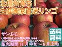 【送料無料】【訳ありリンゴ】太陽の味覚!無袋栽培の「サンふじ」ご家庭向き 約5kg箱