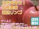 【送料無料】【訳ありリンゴ】太陽の味覚!無袋栽培の「サンふじ」ご家庭向き 約10kg箱
