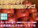 【送料無料】芳香と甘味が特徴的な信州オリジナル品種!サンふじの血を引く、希少な甘系リンゴ「あいかの香り」 上級ランク 約3kg(6〜10玉)
