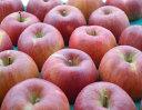 【送料無料】芳香と甘味が特徴的な信州オリジナル品種!サンふじの血を引く、希少な甘系リンゴ「あいかの香り」 中級ランク 約5kg(10〜16玉)