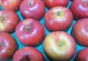 【送料無料】【訳ありリンゴ】芳香と甘味が特徴的な信州オリジナル品種!サンふじの血を引く、希少な甘系リンゴ「あいかの香り」 自家用ランク 約5kg(10〜18玉)