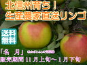 【送料無料】【訳ありリンゴ】フルーティーな甘味が特徴的で食べやすい!人気の黄色種りんご「名月」自家用ランク 約10kg(20〜40玉)