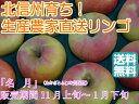 【送料無料】フルーティーな甘味が特徴的で食べやすい!人気の黄色種りんご「名月」中級ランク 約5kg(10〜18玉)