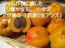 【送料無料】長野県産 旬の特産品 主にジャム作りに最適な【訳あり】「生アンズ 約2.5kg箱」