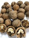 信州産 殻付き菓子クルミ「信濃クルミ」 約450g(約30〜50個くらい)【送料無料(一部地域は有料)】