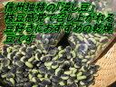 【送料無料】信州産ひたし豆「くらかけ豆」 約600g(2