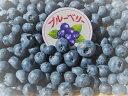 【送料無料】長野県産 冷凍ブルーベリー 約3kg 主にジャム作りや、シャーベットに最適な【訳あり・冷凍品】
