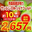 【送料無料】29年度青森県産葉取らずりんご 訳あり10kgサ...