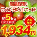 【送料無料】29年度青森県産葉取らずりんご 訳あり5kgサン...