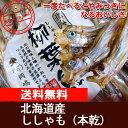 【送料無料】北海道産ししゃも(本乾)60g 北海道!!!【北...