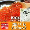 いくら 北海道 500g 塩いくらを送料無料で。価格 8900 円北海道産 いくら 北海道産の塩イクラ 500 g(250g×2)