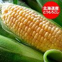 北海道産 とうもろこし 冷凍品 トウモロコシ 北海道の黄色いとうもろこし(冷凍) L〜2Lサイズを1