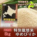 【北海道 ゆめぴりか 特別栽培 米】 【ゆめぴりか 米 5kg】 28年産米 有機肥料使用 北海道米