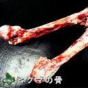 【北海道産】【数量限りアリ】ヒグマ/羆/クマ肉 ヒグマの骨 500g【出汁・スープ用】【無添加】【ジビエ】