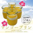 【12個入り☆送料無料】とろける☆特製マンゴープリン!完熟マンゴー使用●夏季限定!【