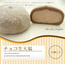 【ネット限定販売!!】チョコ生大福 10個入り 10P27May16