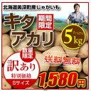 【送料無料】訳ありキタアカリSサイズ5kg
