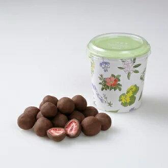 送料無料 ストロベリーチョコミルク 六花亭 円筒箱入(100g) 45箱入り1ケース(dk-2 dk-3)